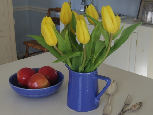 Tulips from the grocery store brighten my day.