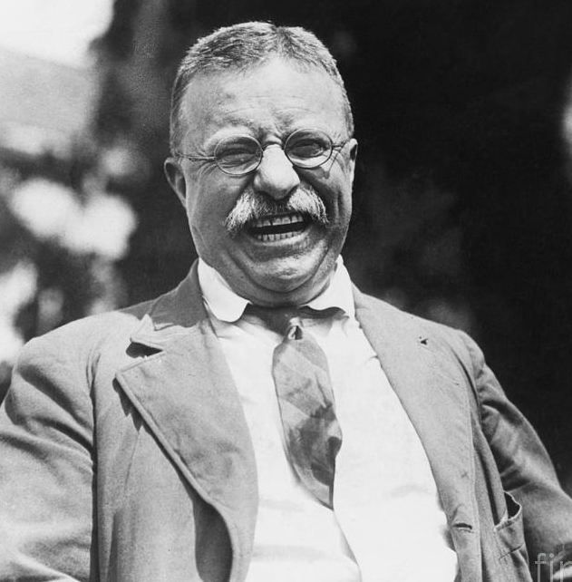 The man in the arena | dual personalities Theodore Roosevelt
