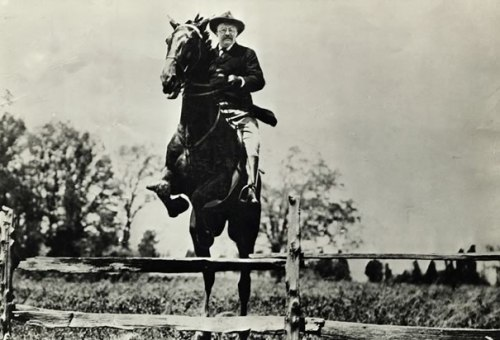 theodore-roosevelt-horse