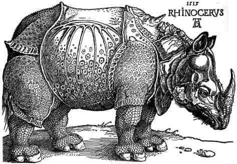 Dürer_-_Rhinoceros