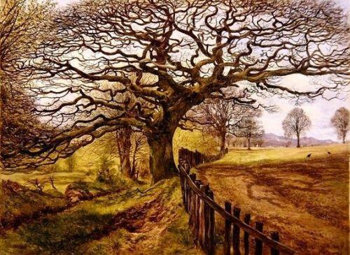 The Tree, 1861 John Milne Donald