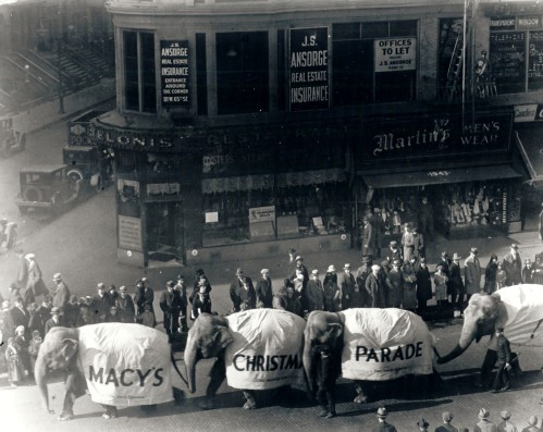 first-parade.jpg
